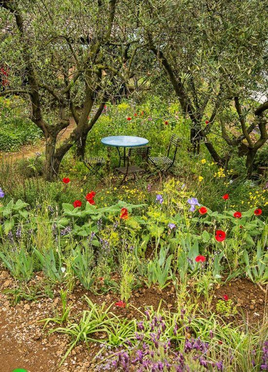 The perfume garden Chelsea Flower Show 2015