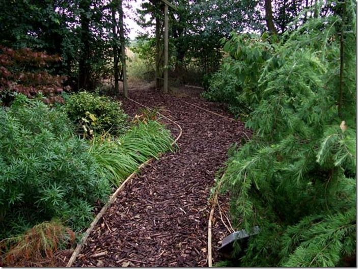 Garden Path Ideas And Suggestions Gardening