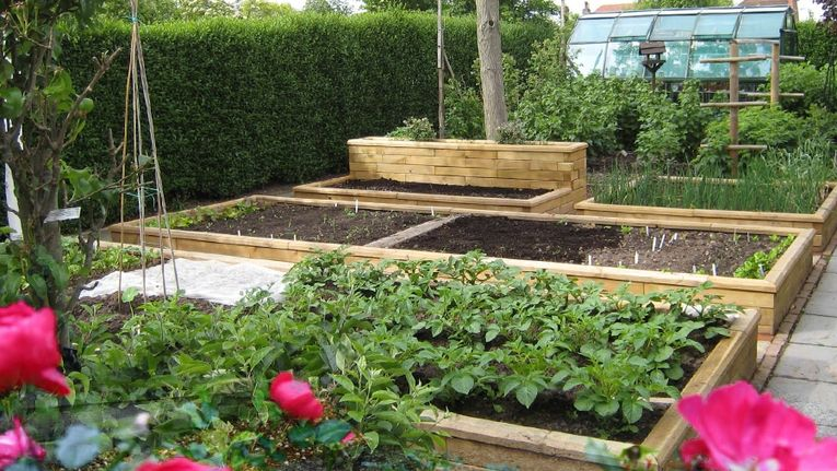 How Do You Build A Raised Bed Gardening Learning With Experts