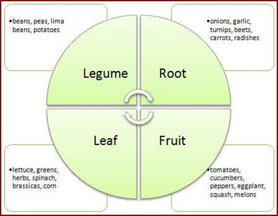 5 Crop rotation