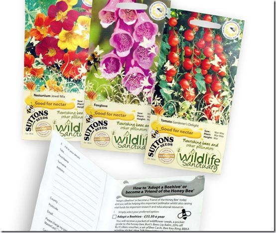 Wildlife Sanctuary Seeds