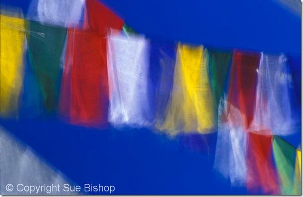 113 prayer flags