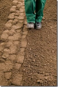 Firming levelled ground, Grass, how to lay sod, how to lay turf, instant lawn, Lawn, Sod, Turf