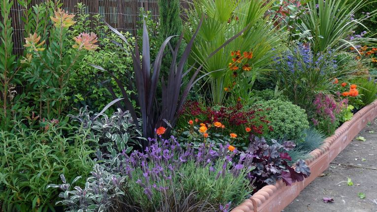 How To Plant The Perfect Border Gardenonaroll Gardening