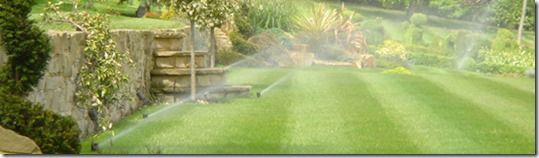 irrigation, watering the garden, how much water do i need to water the garden, Sprinklers, hoses, hose pipe, mulch, mulching, lawn irrigation, drip irrigation, leaky pipe,