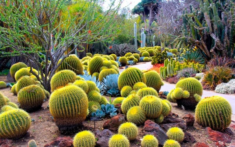Photo From Gardens Decor