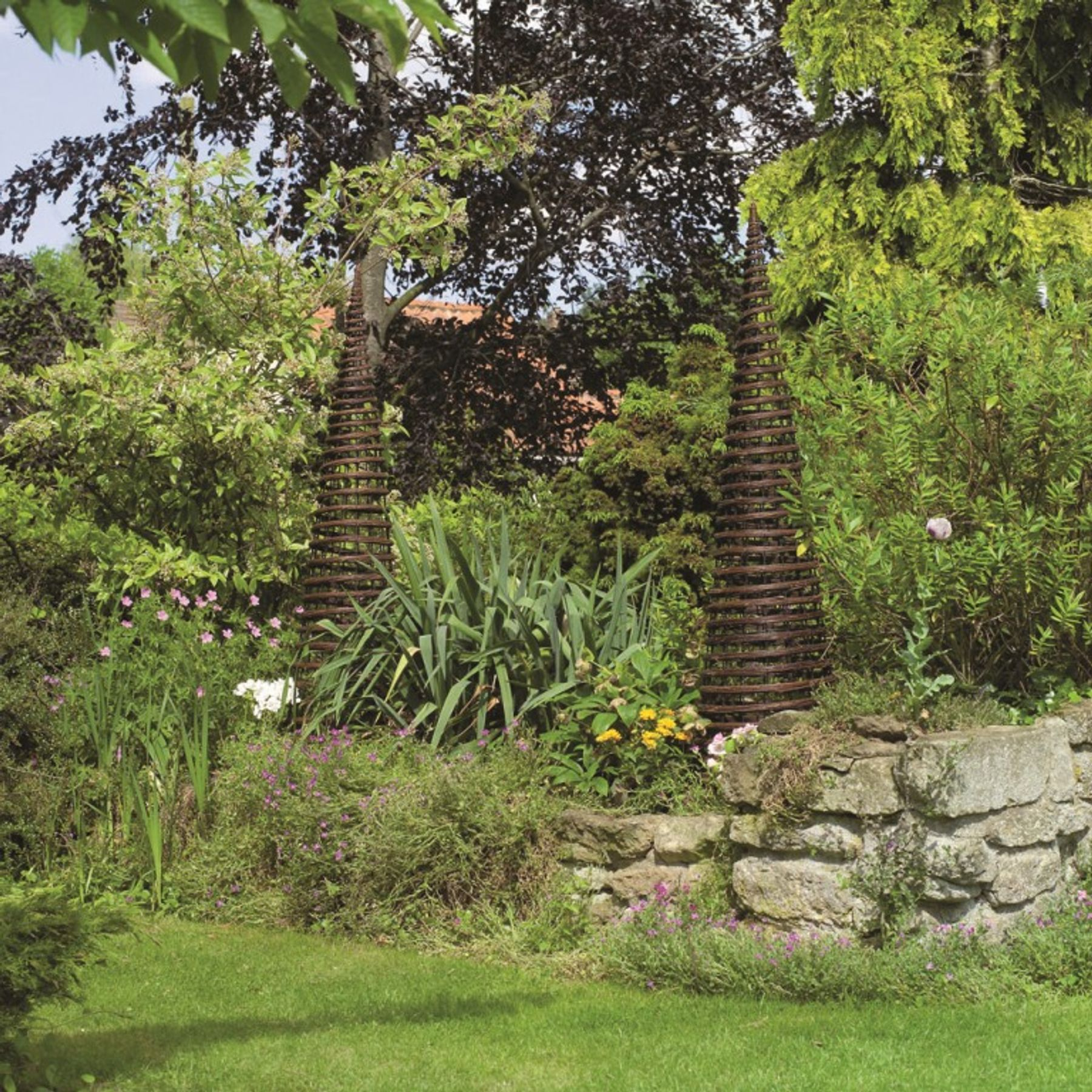 Garden arches obelisks and arbours and climbing plants to - Garden arch climbing plants ...