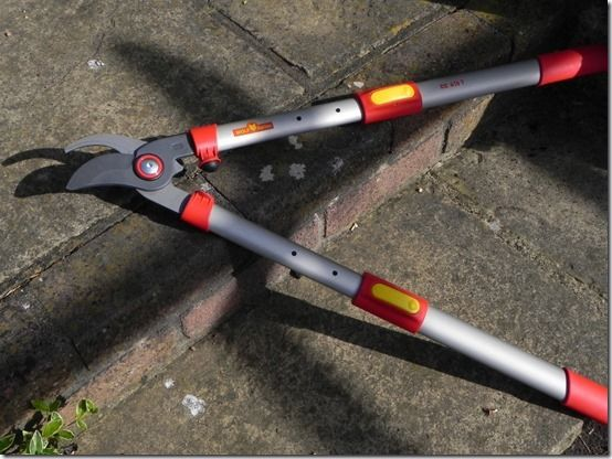 9 extendable  loppers
