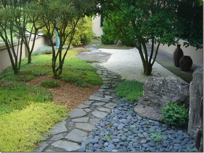 8 gravel with carpeting plants