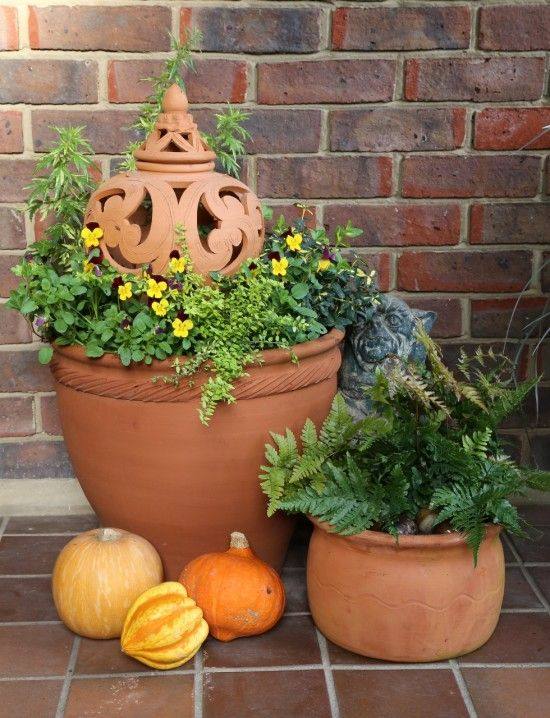 3 Pots, pumpkins and terracotta lantern