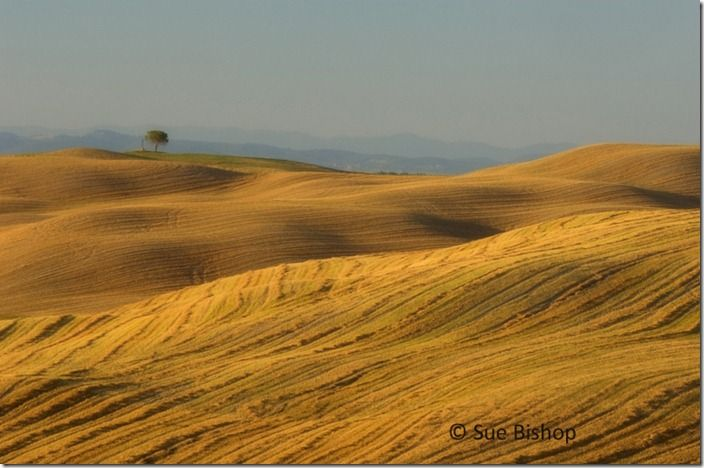 harvested fields, tuscany