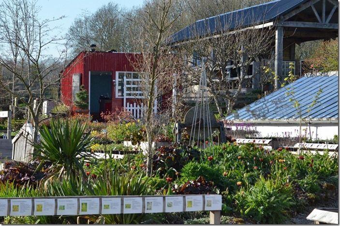 6 Plant sales area