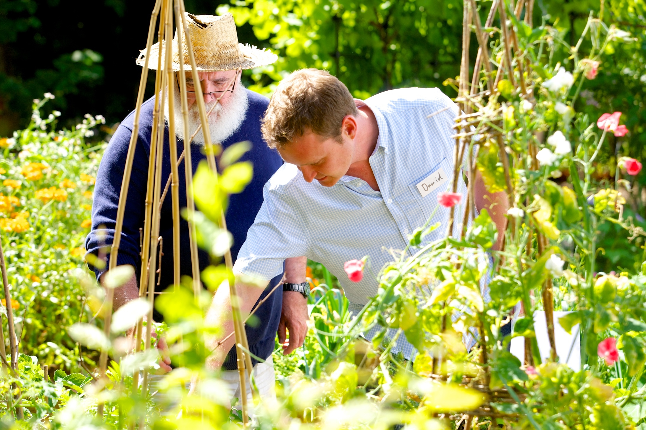 a highly discussed topic within healthcare as to whether or not those with cancer dementia and mental health problems can benefit from gardening