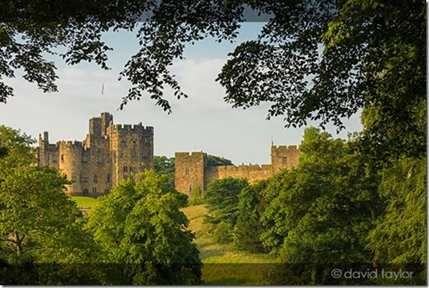 Alnwick Castle framed by trees on a summer's morning, Northumberland, England. The earliest parts of the castle date from the 11th century, though much has been added on over the intervening years, Video, movies, how to shoot video, digital camera, movie mode,