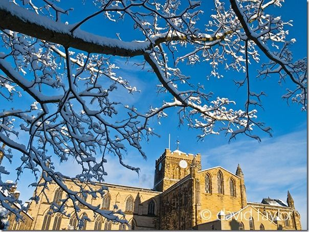 Hexham Abbey framed by snow-covered branches from trees in the Sele Park, Hexham,Northumberland, England