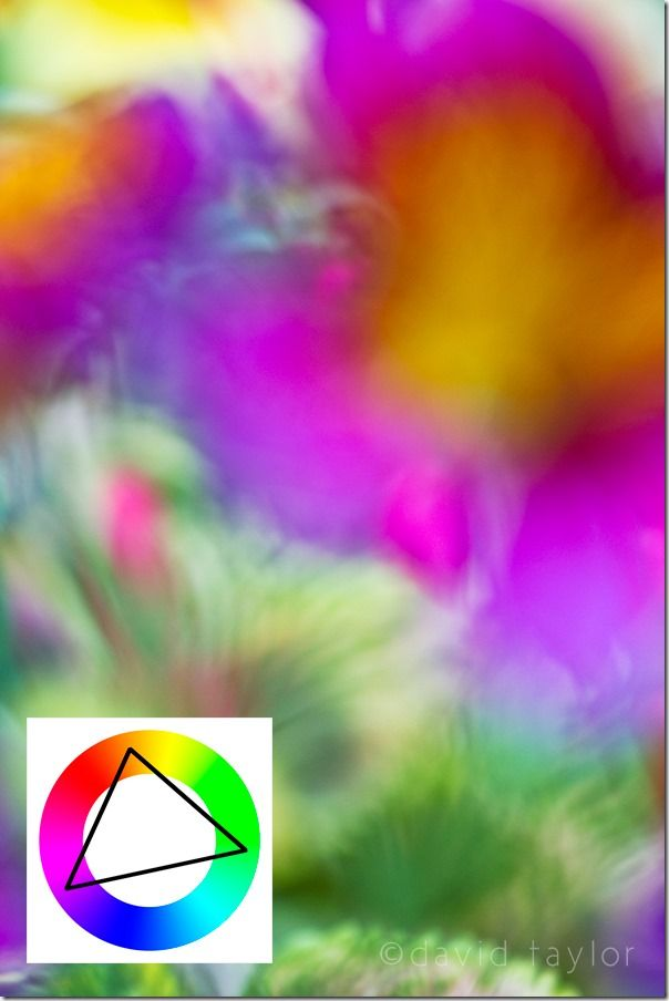 colourwheel, Color, Colour, wheel, theory, Photography, colourwheel color theory, color photography, Colour photography, complimentary color, Colour Harmonies, Color Harmonies,