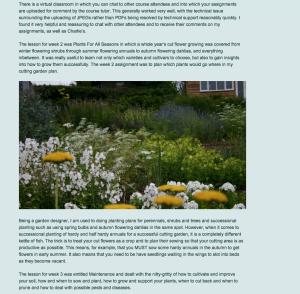 Zinnia Design Blog_Charlie Ryrie 130215 1