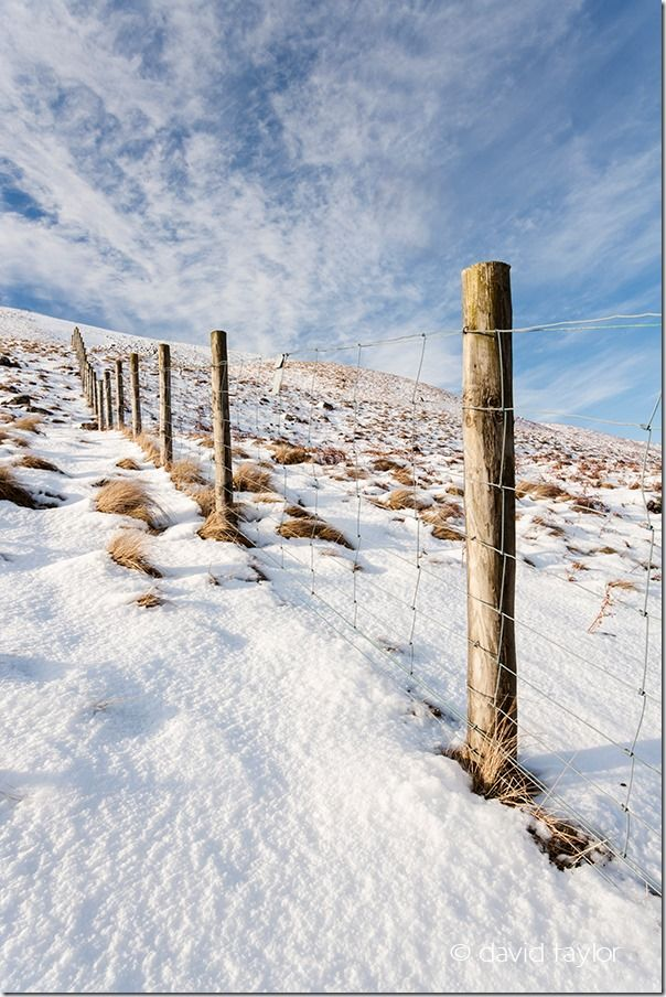 Posts and wire fence running up the Holmwath in the Tees Valley near the route of the Pennine Way, Teesdale, County Durham, England