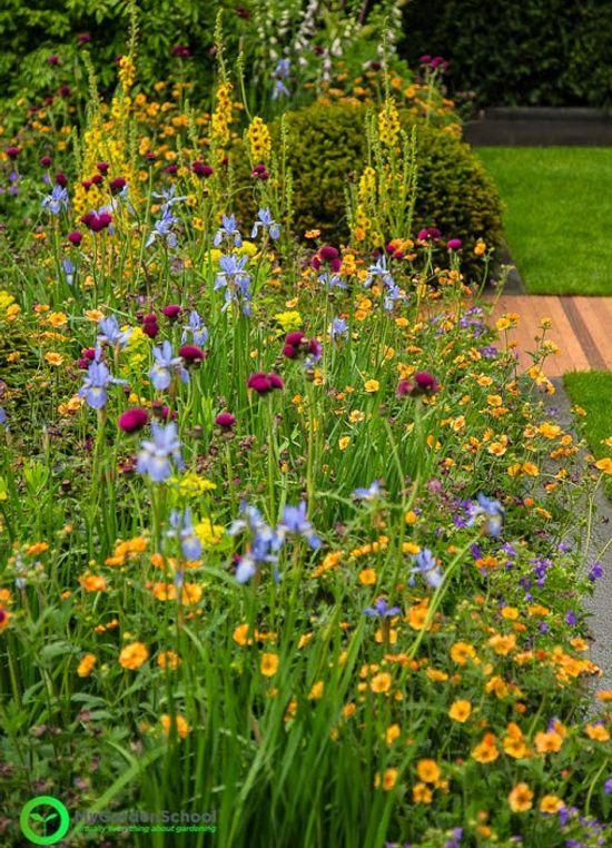 Homebase Garden Chelsea Flower Show 2015 (7)
