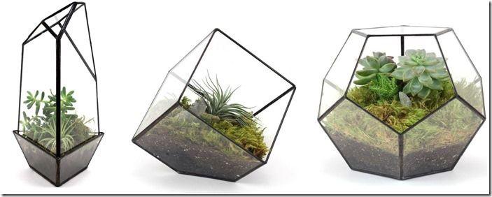 5 Terrariums