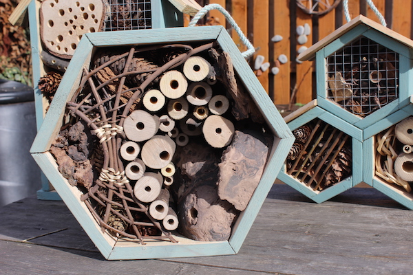 Build A Bee Hotel Gardening Learning With Experts