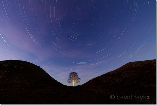 The sycamore of Sycamore Gap silhouetted against a star-filled winter's sky, Northumberland, England, Painting with Light, Flash. Long exposure, torch, How to use a torch in your photography, flasggun, camera flash, LEDs, ambient light,