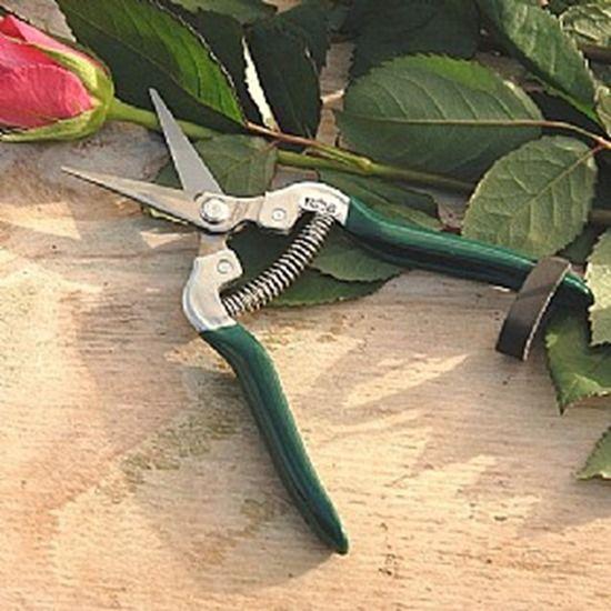 7 Flower snips