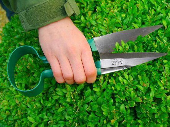 9 Topiary shears (1024x768)