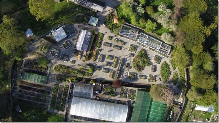 1 The nursery from the air