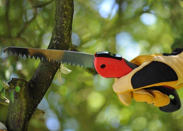 7 Pruning Saw