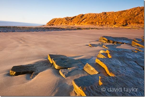 Early-morning light hitting the sandstone rocks that erupt from the sands of Low Hauxley on the Northumberland coast, England