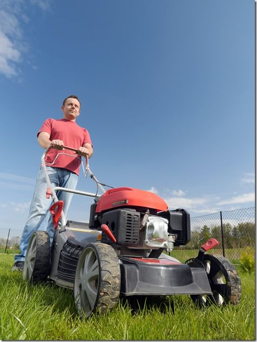 10 Tips When Buying a Lawn Mower