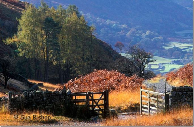 lake district gate open