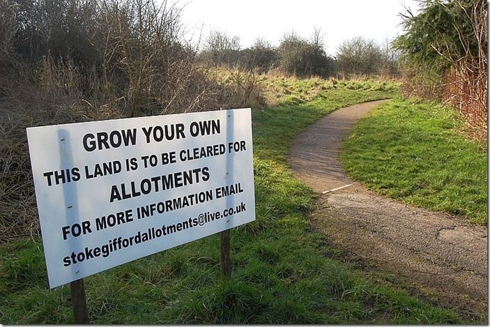 4 Site for new allotments