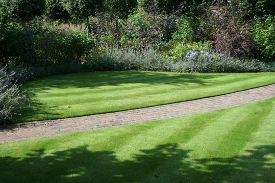 Nice lawn with stripes