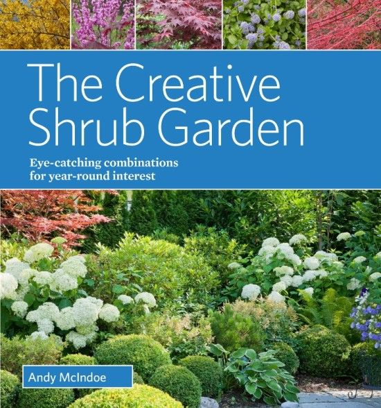 12 The Creative Shrub Garden