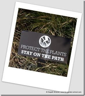 Protect the plants