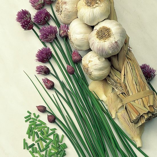 5 Chives