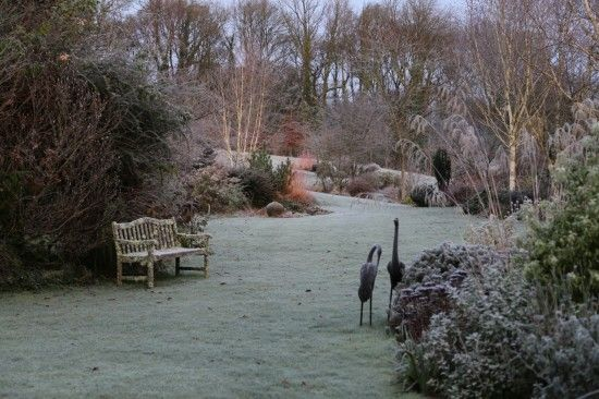 6 Frosty morn (1280x853)