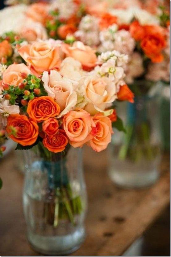 Coral Rose on Pinterest