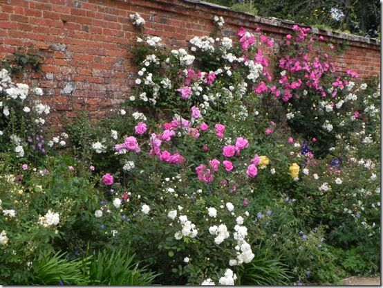 Gardens to visit in Hampshire:  Mottisfont