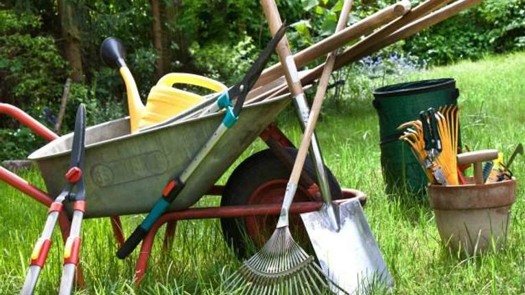 6 Essential Garden Tools Gardening Learning With Experts