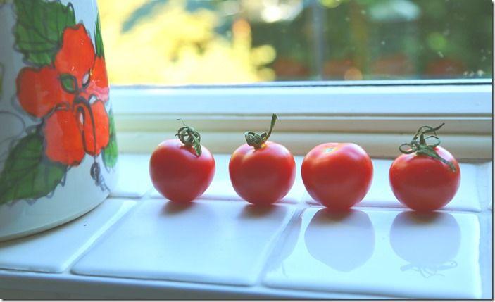 2 Tomatoes on the windowsill