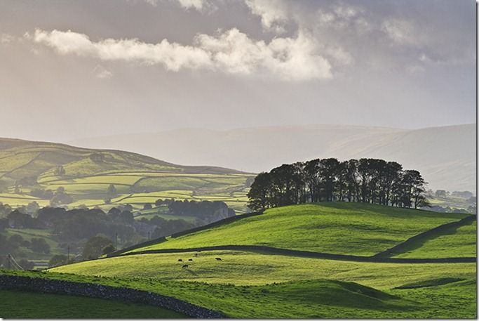Scenic view of the Wensleydale valley near the town of Hawes, showing the typical dry-stone wall field boundaries, Yorkshire Dales National Park, England