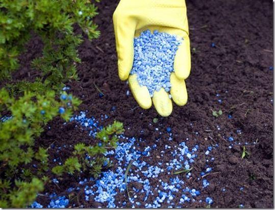 nitrogen, phosphates, potash, seaweed, manure, mulch, firtilizers, Organic Gardening, feeding, feeding your plants, how to feed your plants, lawn firtilizer, Liquid fertilizer, Foliar feeding, LIME,