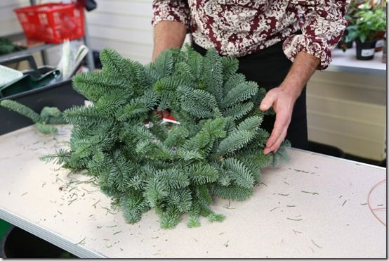 2  Noble fir wreath