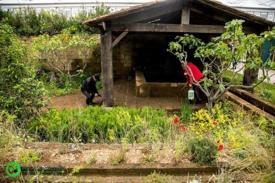A perfumer's Garden in Grasse