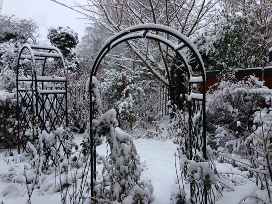 6 Archway in winter