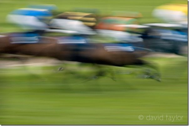 Horse racing, Hexham Race Course, Northumberland, England